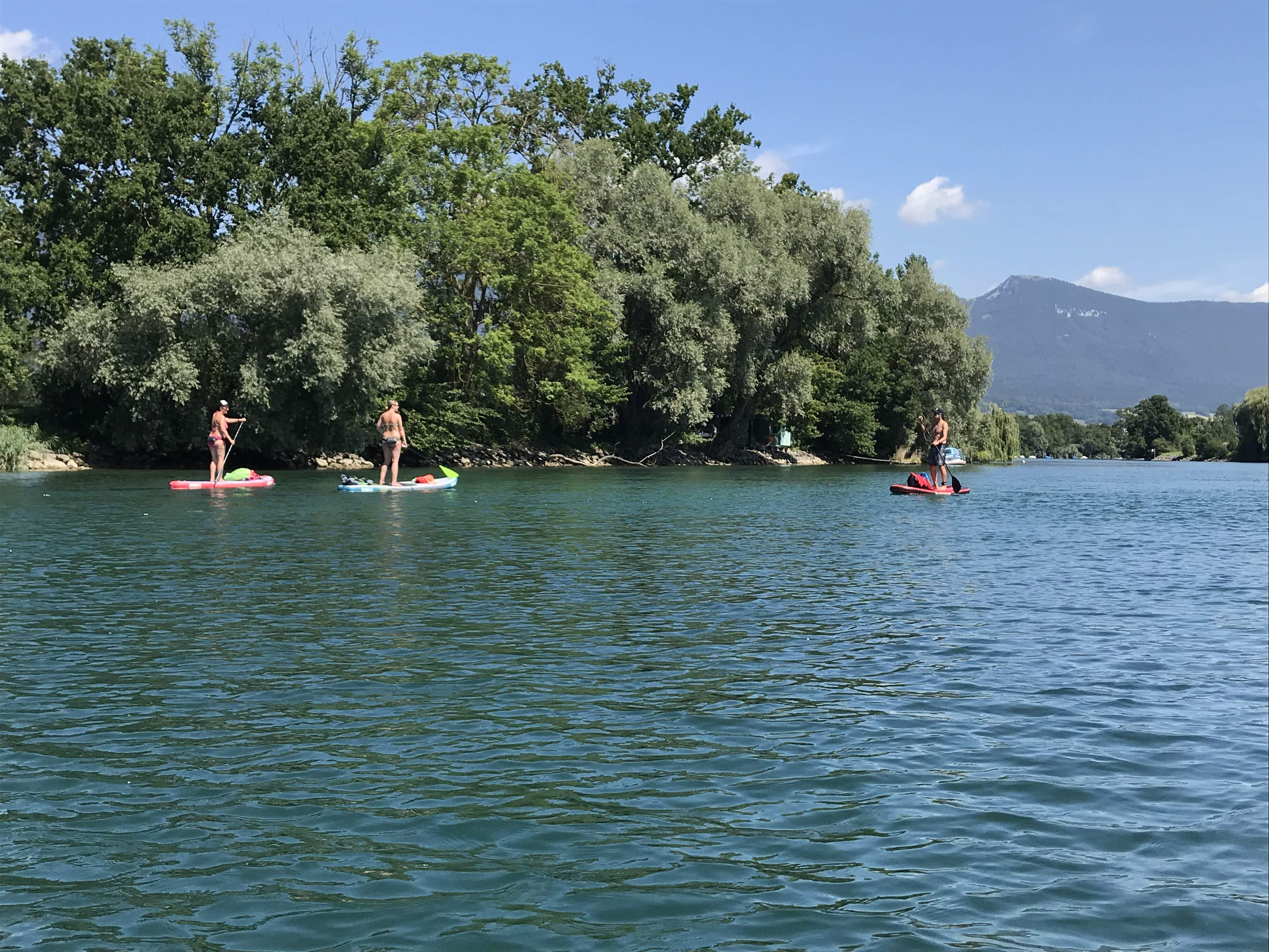 8/4 - Peaceful SUP cruise on the Aare river