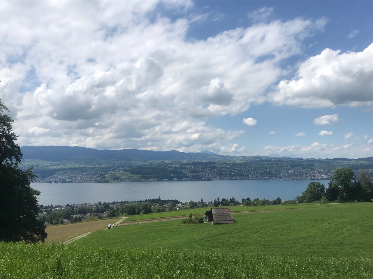 6/13 - Long hike from Zurich to Rapperswil
