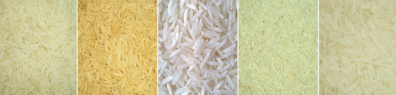 kaimassa_general_trade_company_rice_logopng