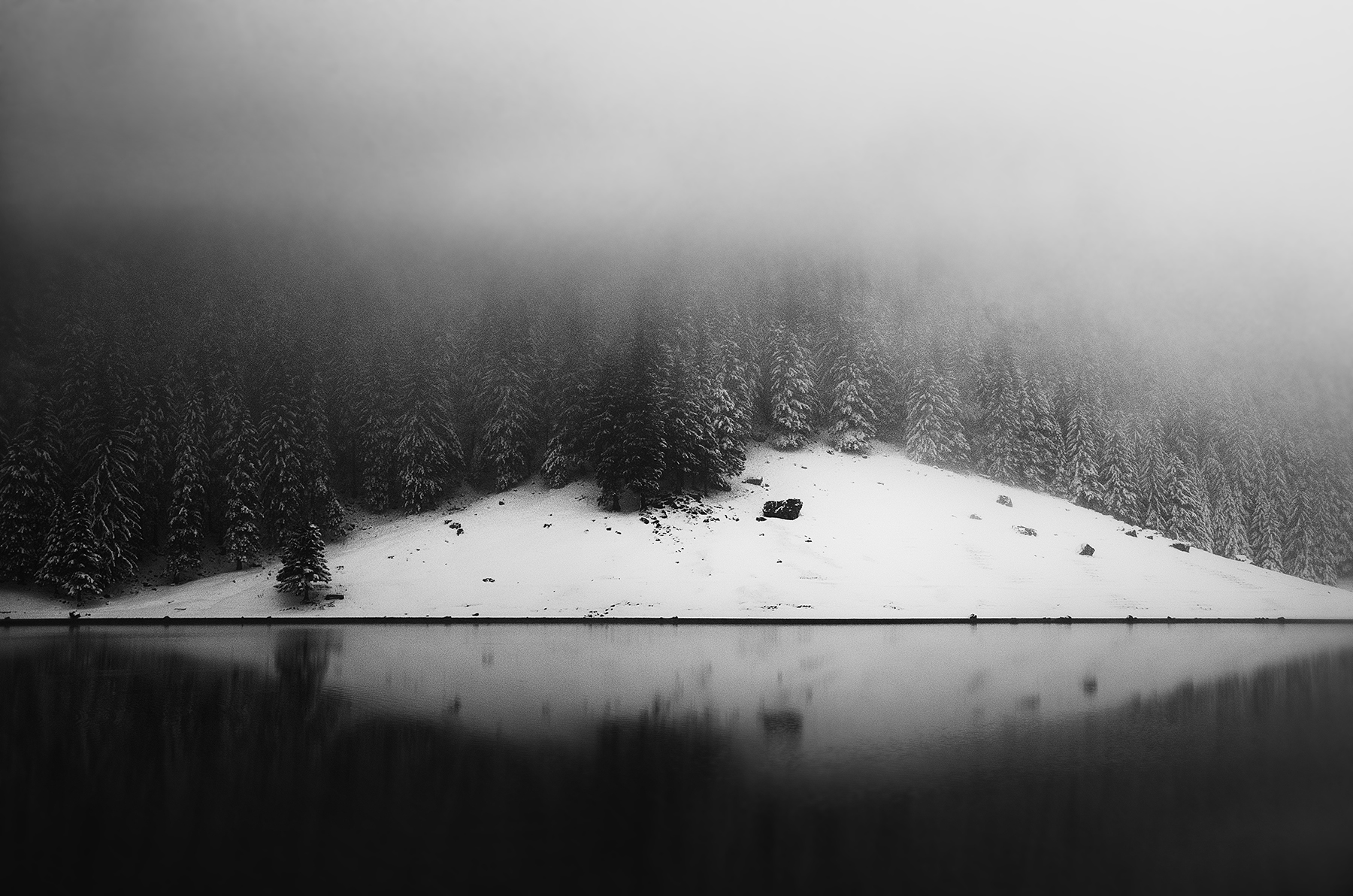 seealpsee, winter, nebel