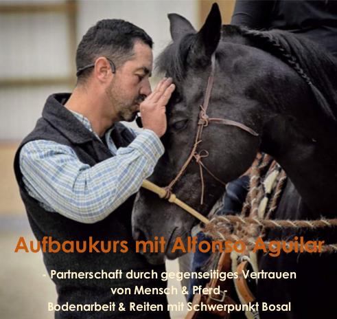 AlfonsoAguilar10_2019ausschreibungpng