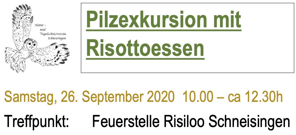Pilzexkursion 2020