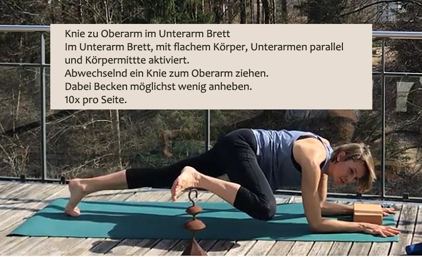 43_KneeUp-UnterarmBrettjpg