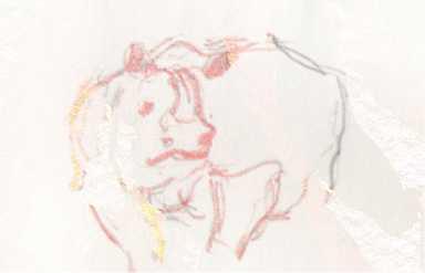 99 Basel Zoo Nashorn01jpg