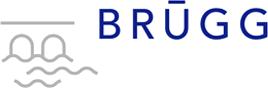logo-brueggpng