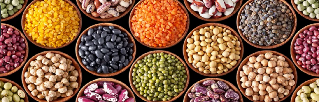 beans_kaimassa_general_trade_company_2png